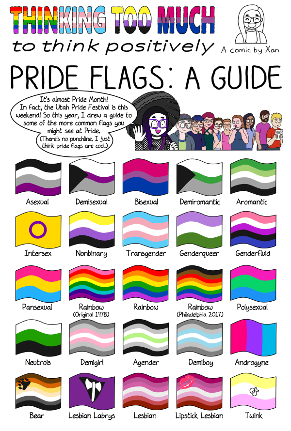 Pride Flags a Guide